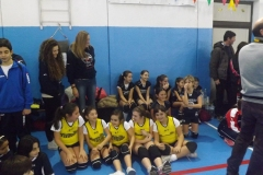 Tappa minivolley