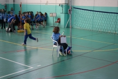 Tappa-minivolley-04-03-2012-001