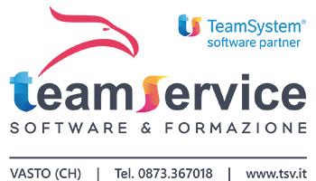 TeamService Logo